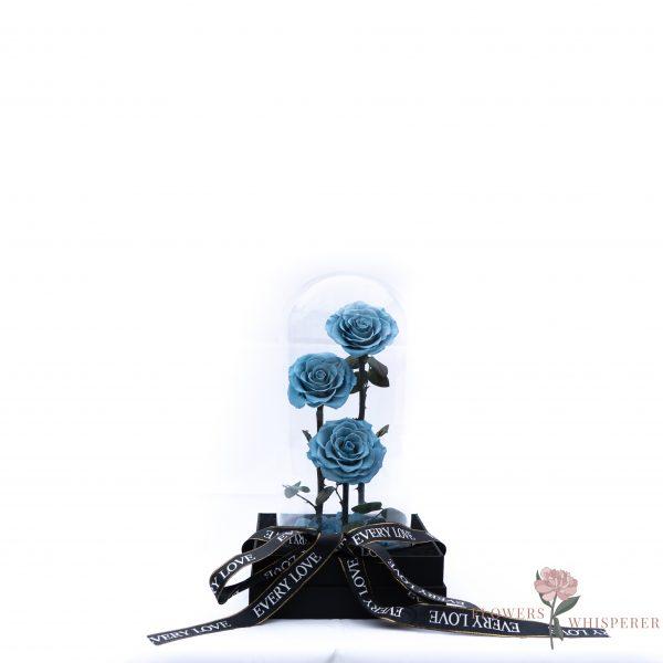 Everlasting Rose – Dusty blue